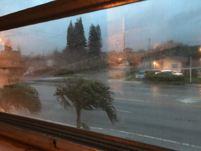 Survived Hurricane Carorgory 4 Irma☁️Sept 11 2017☁️Yes I am Alive, Thank you