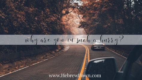 HebrewDawn: slow down